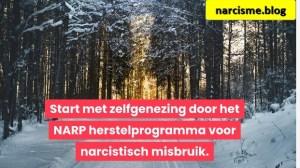Start met zelfgenezing door het NARP herstelprogramma voor narcistisch misbruik